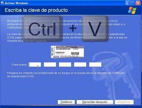 ctrl +v licencia original Windows XP sp3