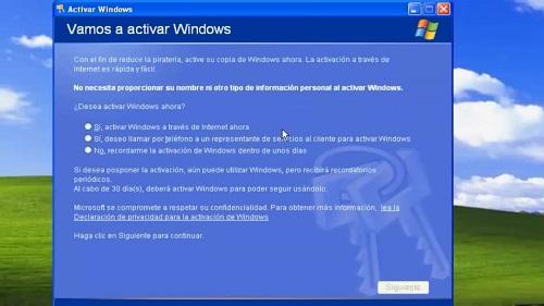 licencia original Windows XP